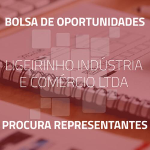 Ligeirinho Indústria e Comércio Ltda