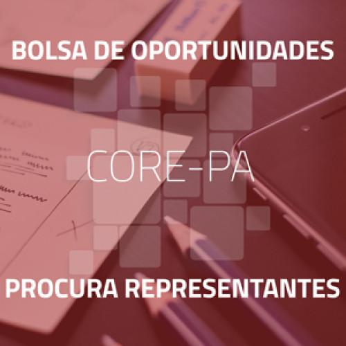 Pezzini Paes Indústria e Comércio Ltda